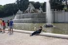 Падаем в фонтан в Шенбрунне