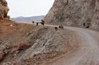 Конец дороги на Балос
