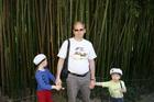 Бамбук в Ботаническом саду