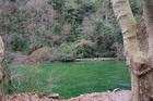 Зеленая речка Сорг