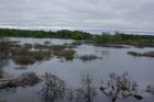 Паводок в Смоленской области